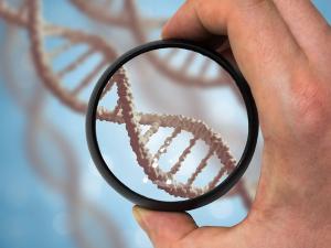 Как сделать ДНК на отцовство бесплатно через суд и кто оплачивает тест