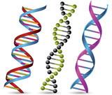 Сколько делается тест ДНК на отцовство по времени: длительность генетической экспертизы