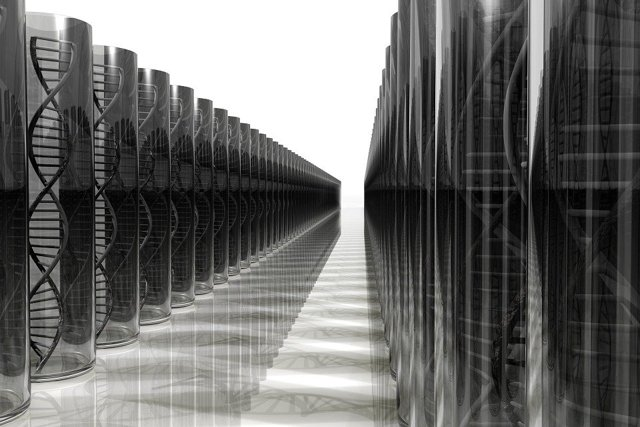 Расшифровка теста ДНК: отрицательный и положительный результат анализа