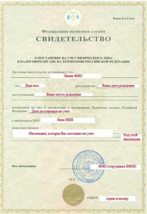 Какие документы нужно менять при смене фамилии и как происходит процедура