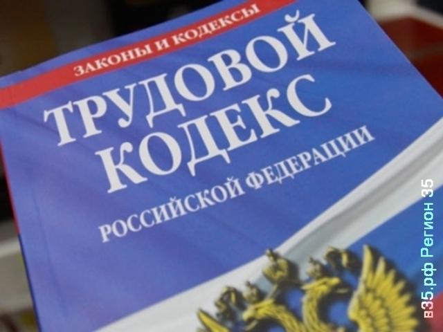 Основные права и обязанности работодателя по Трудовому кодексу РФ