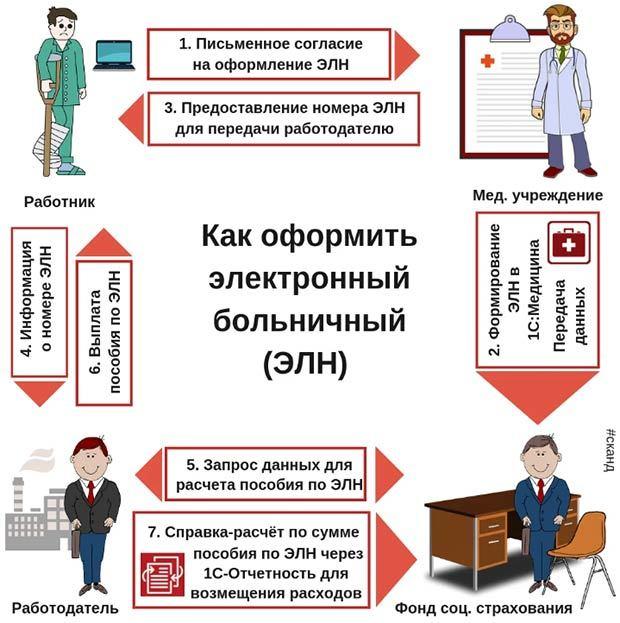 Электронный больничный лист в 2020 году: что это такое, инструкция по заполнению