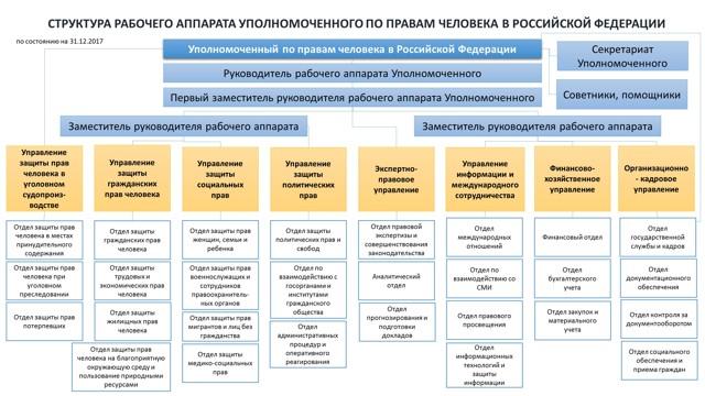 Уполномоченный по правам ребенка в РФ: обязанности и полномочия омбудсмена в Российской Федерации