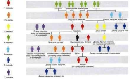 Как делится наследство между наследниками первой очереди и другими претендентами