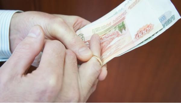 Сколько действительна госпошлина на развод и как ее оплатить
