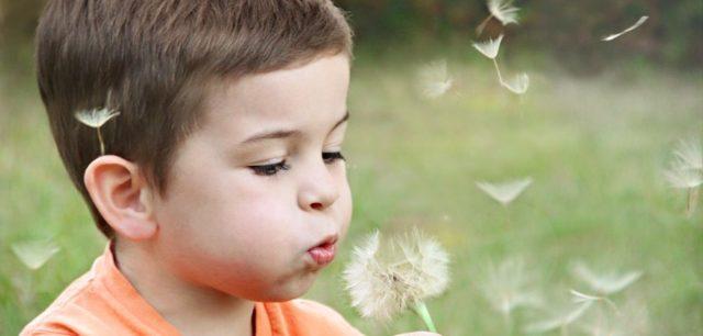 Установление отцовства в органах ЗАГСа: добровольное признание ребенка вне брака